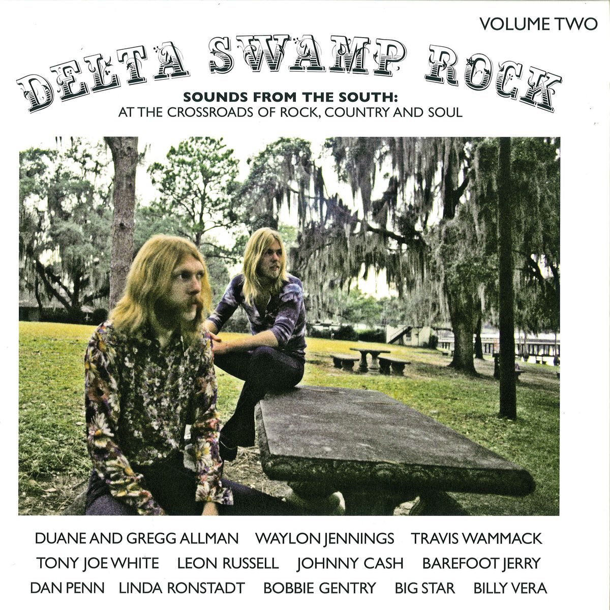 Delta Swamp Rock Sounds From The South At The