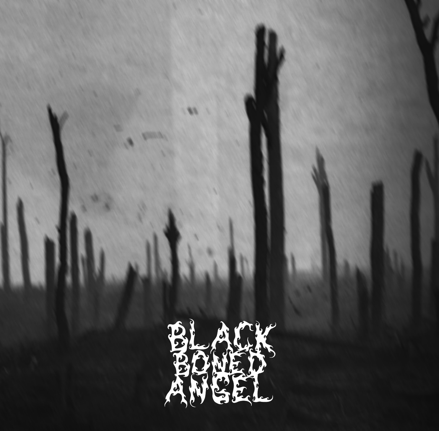Black Boned Angel – Verdun – (2009)